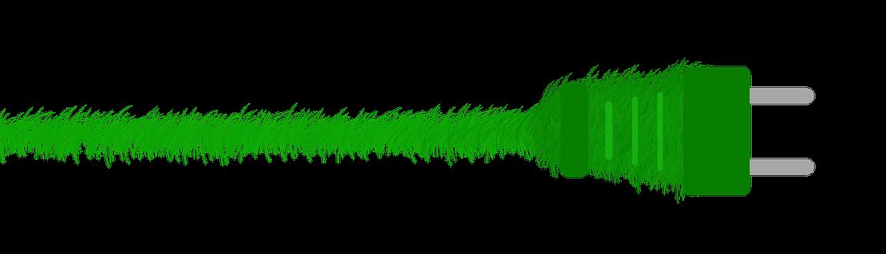 green-1974056_1280