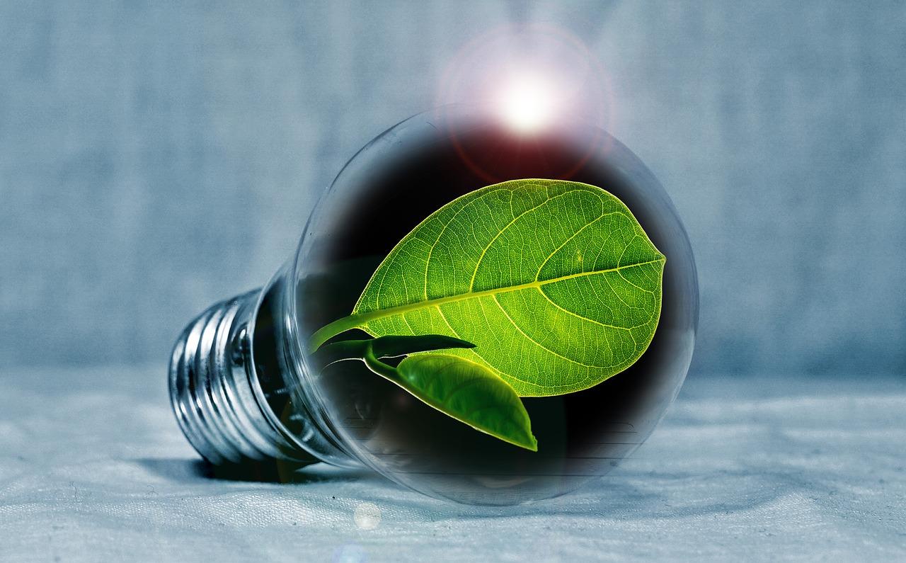 light-bulb-2631864_1280